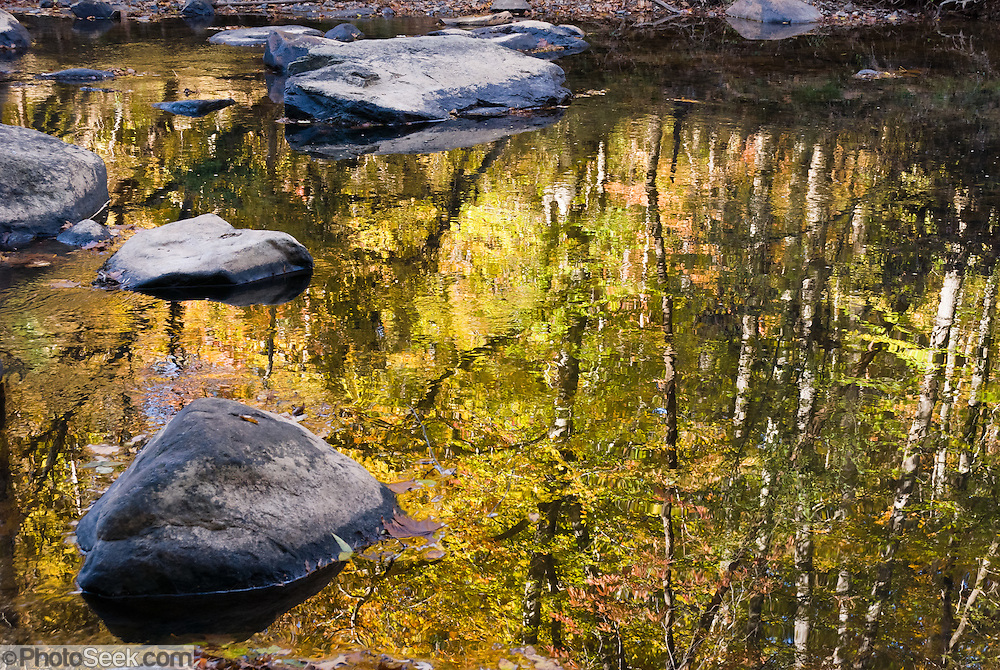 Fall leaf colors reflect in Eno River, in Eno River State Park, which is in Durham and Orange Counties, North Carolina, USA. Native Americans of the Eno, Shakori and Occoneechee tribes lived along the river prior to European settlement. Some of the tribes merged in the late 17th century and established a village near present-day Durham. Settlers moved to the area later to set up farms and more than 30 mills along the length of the Eno River.  Efforts to establish Eno River State Park started in 1965 when the city of Durham proposed building a reservoir in the river valley. A group of concerned citizens led a campaign to save the Eno and formed the Association for the Preservation of the Eno River Valley. In May 1972, the state of North Carolina approved the park, and the reservoir was not built. In 1975, the state--with help from the Eno River Association and the Nature Conservancy--acquired more than 1,000 acres (4 km²) of land for the park.