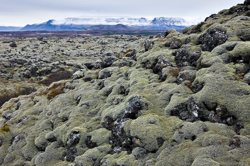 Lava in Heiðmörk natural reserve, Reykjavík Iceland. Mount Esja in background. Frá Hrauninu í Heiðmork. Esjan í baksýn.