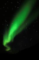 Aurora borealis and the Big Dipper in Interior Alaska