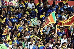 © Licensed to London News Pictures. 17/02/2012. Sydney Cricket Ground, Australia. Sri Lankan cricket fans cheering after the Sri Lankans defeated Australia during the One Day International cricket match between Australia Vs Sri Lanka. Photo credit : Asanka Brendon Ratnayake/LNP