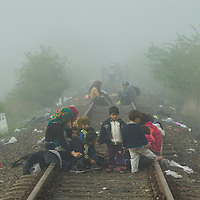 Refugees sit on an old railway line along which they have crossed over the border from Serbia. Further ahead is the collection point number 1 near Röszke. There they will queue for buses, to be taken for registration by the Hungarian authorities, a step the latter have imposed before any further movement is allowed, and one which many refugees are reluctant to take. The sometimes chaotic and rubbish strewn collection point, with infrastructure, food and basic medical care provided only thanks to volunteers with support from UNHCR, is situated a kilometer inside the Hungarian frontier from Serbia, along this old railway line, which thousands of refugees have used to cross the border. The flow of refugees continued to grow, with delays increasing, until the Hungarian government sealed the frontier with Serbia using razor wire and a high fence, and brought in new laws on the 15th September effectively halting the influx of refugees.