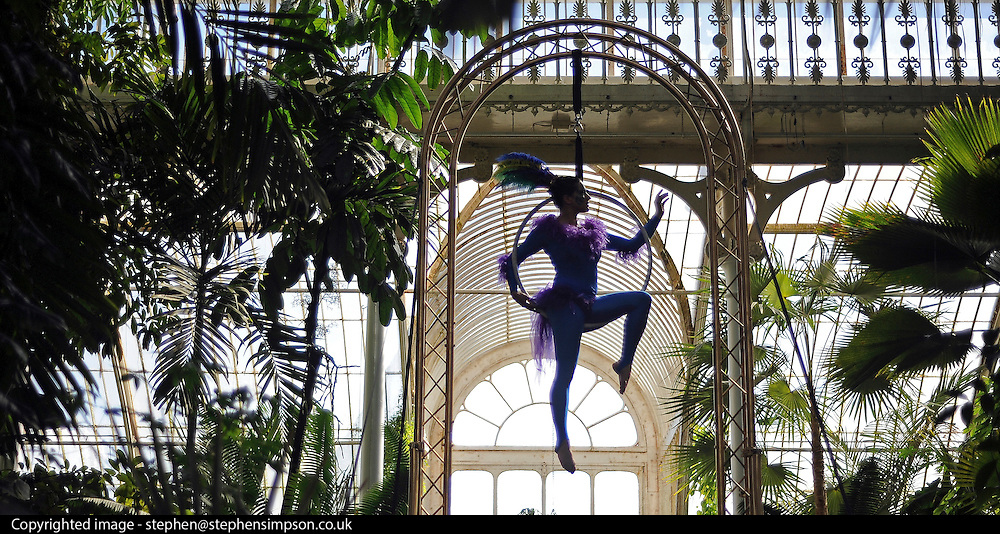 © under license to London News Pictures. LONDON, UK  10/05/2011. The Launch of Kew Gardens Summer Festival in West London, today (10/05/2010). Sophie Page-Hall performs an acrobatic display, evoking tropical birds in the iconic Palm House. .Photo credit should read Stephen Simpson/LNP.