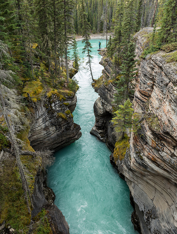 Beautiful Athabasca Falls along the Icefields Parkway just south of Jasper, Alberta.