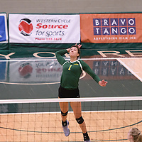 4th year outside hitter Ashlee Sandiford (1) of the Regina Cougars in action during Women's Volleyball home game on January 13 at Centre for Kinesiology, Health and Sport. Credit: Arthur Ward/Arthur Images 2018
