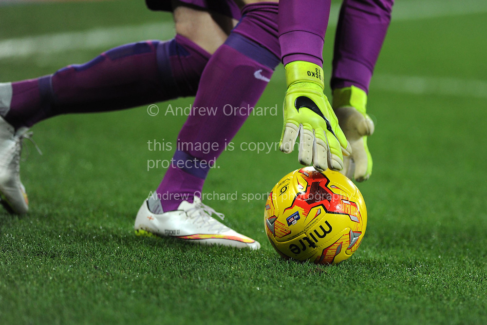 a close up view as goalkeeper David Stockdale of Brighton as he picks up the ball. Skybet football league championship match, Cardiff city v Brighton &amp; Hove Albion at the Cardiff city Stadium in Cardiff, South Wales on Tuesday 10th Feb 2015.<br /> pic by Andrew Orchard, Andrew Orchard sports photography.