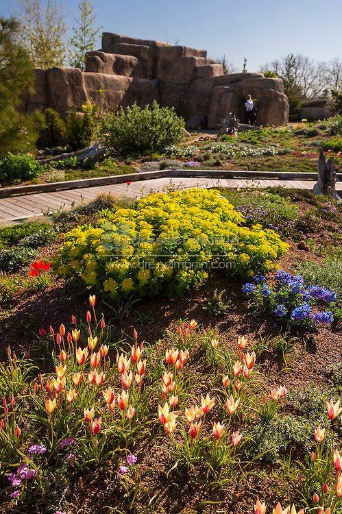 mordecai childrens garden in spring