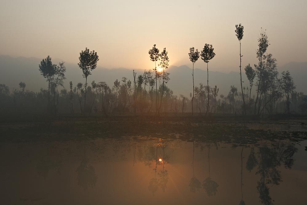 Dal Lake Srinagar, Kashmir, India
