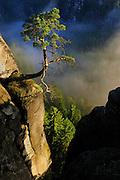 Elbe Sandstone Mountains (Elbsandsteingebirge) in the National Park Saxon Switzerland (Saechsische Schweiz). The famous Bastei rock formations. Europe, central europe, Germany | Elbsandsteingebirge im Nationalpark Sächsische Schweiz. Die berühmte Bastei-Felsformationen. Europa, Mitteleuropa, Deutschland