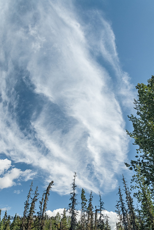 Cirrus fribatus clouds over lower Kenai Peninsula; Alaska