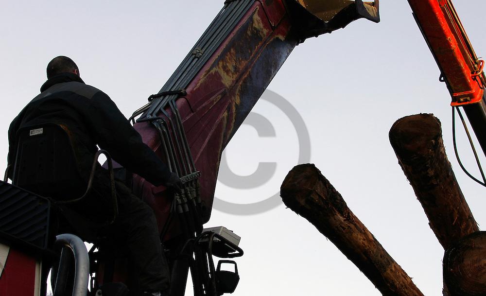 05/01/06 - VILLEVOCANCE - ARDECHE - FRANCE - MOUNIER BOIS SARL. Scierie et fabrique de palettes - Photo Jerome CHABANNE