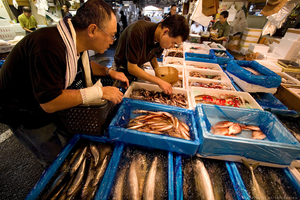Selling and buying of fish in the Tsukiji. Tsukiji fish market  is the biggest wholesale fish and seafood market in the world and also one of the largest wholesale food markets of any kind. The market is located in Tsukiji in central Tokyo, and is a major attraction for foreign visitors.