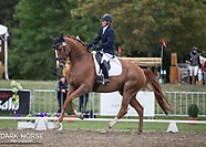 2017-03-08 HOY Dressage Oval Level 3 MFS