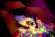 Wide shot of boy with glowing goggles lying in a box filled with glowing packing peanuts.Black light