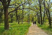 Trail along  the Seine River.<br /> Winnipeg<br /> Manitoba<br /> Canada<br />Winnipeg<br />Manitoba<br />Canada