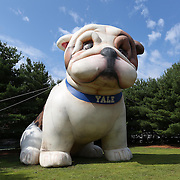 August 16, 2014, New Haven, CT:<br /> An inflatable Yale Bulldog is shown during Kids Day on day three of the 2014 Connecticut Open at the Yale University Tennis Center in New Haven, Connecticut Sunday, August 17, 2014.<br /> (Photo by Billie Weiss/Connecticut Open)