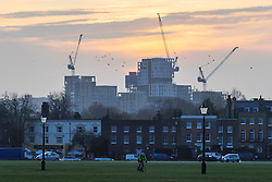 © Licensed to London News Pictures. 29/11/2019. London, UK. Sunrise during a cold and crisp morning on Blackheath. Temperatures will continue to drop this evening with lows of 1°.   Photo credit: George Cracknell Wright/LNP