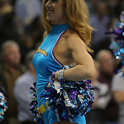 Jan 02, 2010; New Orleans, LA, USA; A New Orleans Hornets Honeybees dancer performs during a game at the New Orleans Arena. The Hornets defeated the Rockets 99-95.  Mandatory Credit: Derick E. Hingle-US PRESSWIRE