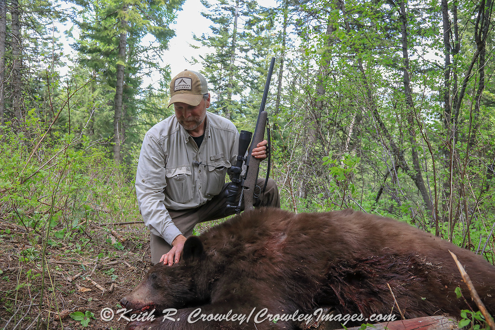 Spring bear hunting with hounds in Idaho
