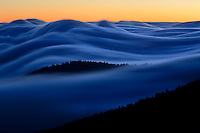Above the clouds in Great Smoky Mountains National Park, USA.