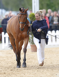 59839687<br /> Zara Phillips, daughter of Princess Anne and Granddaughter of the British Queen at Luhmühlen, before the Jump in Look, Salzhausen in Germany, June 16, 2013. UK ONLY