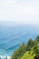 Cape Lookout Trail along the Oregon Coast.
