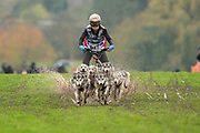 Competitor in 6 dog class during the WSA Dryland World Championship 2019 at Firle Country Estate in the South Downs National Park, Lewes, Sussex, United Kingdom on 16 November 2019.