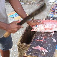 Biak Fish market Papua