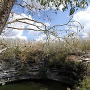 Sacred Cenote. Chichen Itza,Yucatan. Mexico.