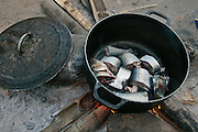 Fish cooks in a pot at the home of Edith Saysay in the village of Jenneh, Bomi county, Liberia on Tuesday April 3, 2012. As part of a UNICEF sponsored social cash transfer programme, Edith and her family receive 2650 Liberian dollars (approx. 36 USD) per month. The money has allowed her to buy cassava from which she makes fufu that she then sells for profit. She also uses some of the money to send all of her seven children to school. Before joining the programme, only 3  of her children attended school.