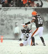 Cleveland's Mike Adams, left, and Josh Cribss down a punt on the 1-yard line..The Cleveland Browns continued their playoff hunt with an 8-0 win over visiting Buffalo.  .Photo by David  Richard