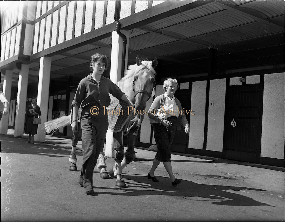 """01/08/1960<br /> 05/08/1960<br /> 01 August 1960<br /> R.D.S Horse Show Dublin (Monday). Miss Kyra Hogg (left) arriving at the Show with her horse """"Rocky"""" accompanied by her mother Mrs Margaret Hogg."""