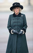SANDHURST- UK- 16th Dec 2016. <br />