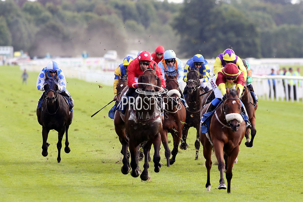 ROULSTON SCAR (3) ridden by Megan Nicholls and trained by Kevin Ryan winning The Coopers Marquees Handicap Stakes over 6f (£15,000)   during the Family Race Day held at York Racecourse, York, United Kingdom on 8 September 2019.