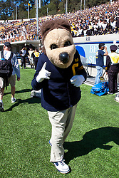 BERKELEY, CA - SEPTEMBER 08: The California Golden Bears mascot on the sidelines against the Southern Utah Thunderbirds during the fourth quarter at Memorial Stadium on September 8, 2012 in Berkeley, California. The California Golden Bears defeated the Southern Utah Thunderbirds 50-31. (Photo by Jason O. Watson/Getty Images) *** Local Caption ***