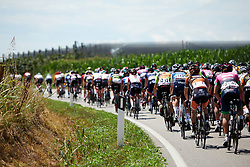 Tayler Wiles (USA) in the bunch during Stage 10 of 2019 Giro Rosa Iccrea, a 120 km road race from San Vito al Tagliamento to Udine, Italy on July 14, 2019. Photo by Sean Robinson/velofocus.com