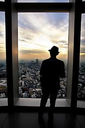 Japan, Tokyo<br /> Skyline <br /> &copy;Carmen Secanella.