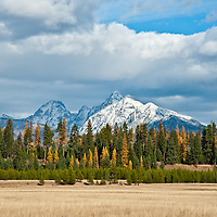 fall colors, snow capped mountains meadow in glacier national park near pole bridge montana