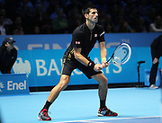 Serbia's Novak Djokovic during the Semi Final of Barclays ATP World Tour 2014 between Serbia's Novak Djokovic and Japan's Kei Nishikori, O2 Arena, London, United Kingdom on 15th November 2014 © Pro Sports Images