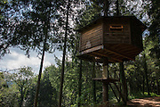 &quot;Cabanes als arbres&quot; offers a unique tree-house experience to all nature lovers and adventure junkies. It was a real pleasure to stay in such direct contact with the trees and the surrounding enchanting ecosystem - The pleasures of an exile among the foliage, as we spent the night  in a sustainably designed nest placed delicately in the framework of the branches of a beautiful tree - In our case 'Cabana Pit Roig&quot;<br /> <br /> Submerged in an ocean of branches in the northeast of Catalonia, in the county of La Selva, ten comfortable tree houses perfectly camouflaged within the surrounding foliage, each named after oneof the forrest's native birds. <br />  <br /> One of the great attractions of staying in a tree house in this enchanting corner of Catalonia, is the feeling of freedom and privacy it offers. Everywhere you look, you feel surrounded by the ease of the chirping of birds, and the murmur of the hidden secrets of the forest.. A truth somewhat misleading, since within a few meters emerges another of these wooden wonders or the country house The Vileta.<br />  <br /> The Vileta is a typical Catalan country house equipped with parking, reception, canteen, living room, showers, swimming pool and garden.