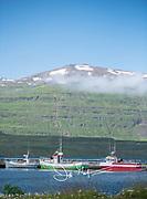 Colorful fishing boats docked at Seydisfjordur, Iceland.