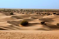 khuri dunes in thar desert near jaisalmer in rajasthan state in india