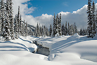 Beautiful fresh snow blankets the Callaghan backcountry ski area, near Whistler, BC Canada