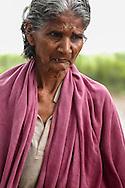 INDE<br /> Village d'Intouchables, Kalarpuram.