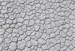 Cracked land (B&W)