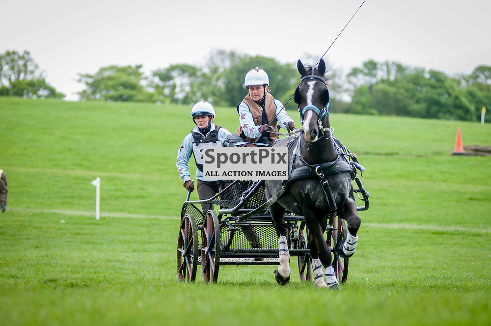 His Royal Highness, Prince Phillip, The Duke of Edinburgh, was attending the 2014 Hopetoun Horse Driving Trails. Amanda Hawley in action. Saturday, 24th May, 2014. (c) Wullie Marr | SportPix.org.uk