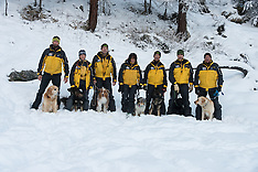 PDG 14 Avalange dogs