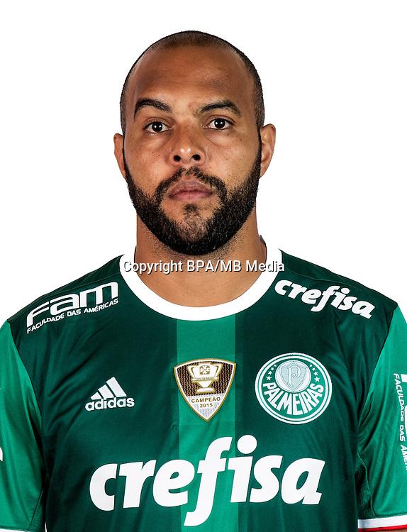 Brazilian Football League Serie A / <br /> ( Sociedade Esportiva Palmeiras ) - <br /> Alecsandro Barbosa Felisbino &quot; Alecsandro &quot;