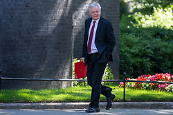 © Licensed to London News Pictures. 26/06/2018. London, UK. Secretary of State for Exiting the European Union David Davis on Downing Street for the Cabinet meeting. Photo credit: Rob Pinney/LNP