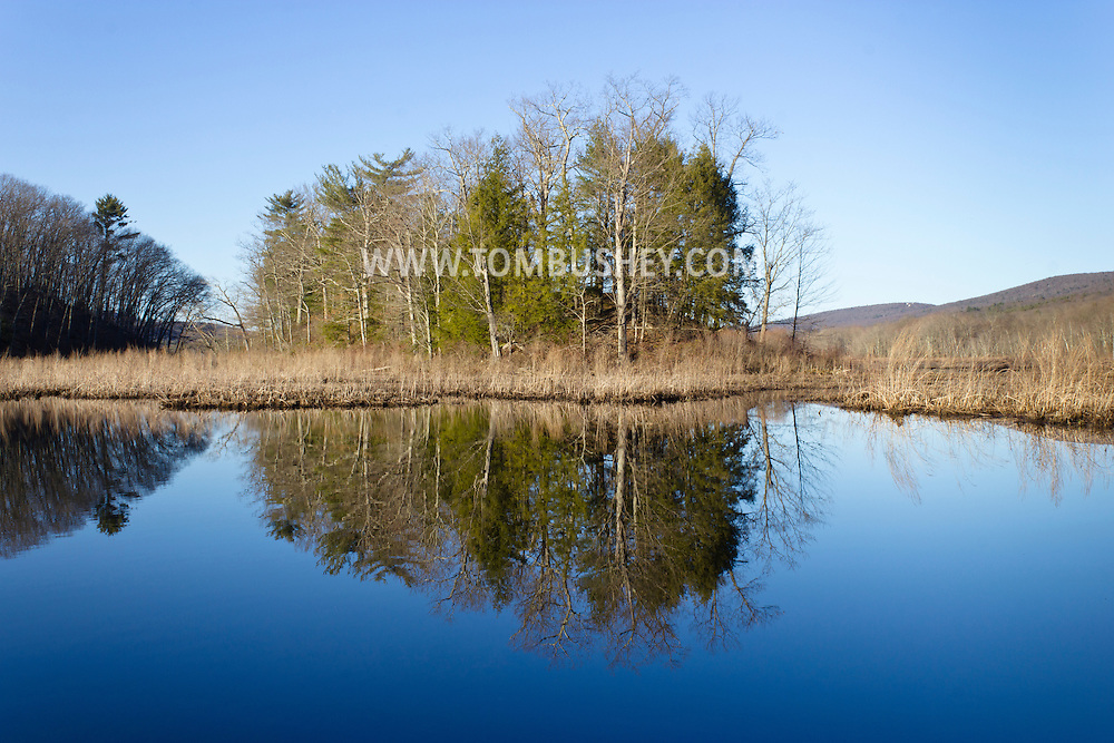 Mamakating, New York - Spring scenes at the Bashakill Wildlife Management Area on April 6, 2013.
