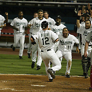 Miami, FL / 2005 -The Florida Marlins bench clears to meet Joe Dillon (#12) as he crosses the plate in the tenth inning to score the winning run over the Philadelphia Phillies on a game-winning hit by Carlos Delgado.  The Marlins won 4-3 in ten innings. Photo by Mike Roy-US PRESSWIRE © Copyright 2005 Mike Roy